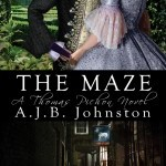 The Maze by A.J.B. Johnston (CBUP, 2014)